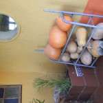 Enaleni Farm- courtesy of CLP 004