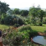 Enaleni Farm