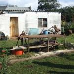 Enaleni Farm- courtesy of CLP 013