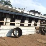 Enaleni Farm- courtesy of CLP 022