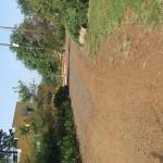Enaleni Farm- courtesy of CLP 046