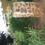 Enaleni Farm- courtesy of CLP 049