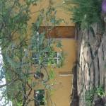 Enaleni Farm- courtesy of CLP 052