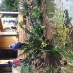 Enaleni Farm- courtesy of CLP 061