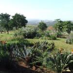 Enaleni Farm- courtesy of CLP 107